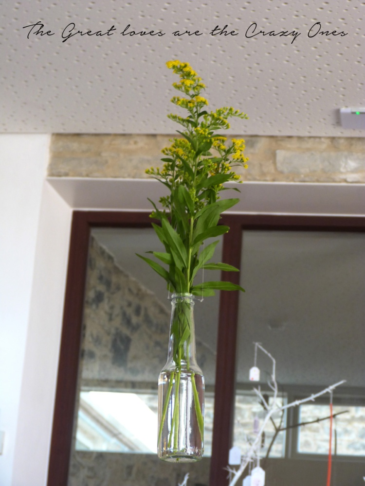 albalah_flors